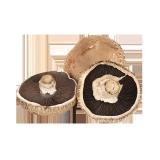 Portobello Mushroom - 250 g