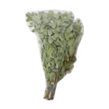 Oregano in Bunches - 100G