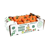 Hydroponic Tomatoes 1KG - 1 pack