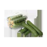 Hydroponic Cucumber - 1 pack