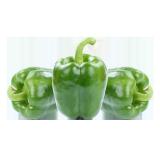 Green Pepper - 250 g