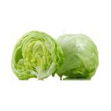 Lettuce Iceberg - 500 g