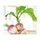 Turnips - 500 g