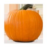 Pumpkin india - 1.0 kg
