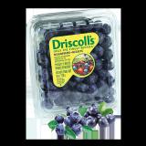 Fresh Blueberries -  170G