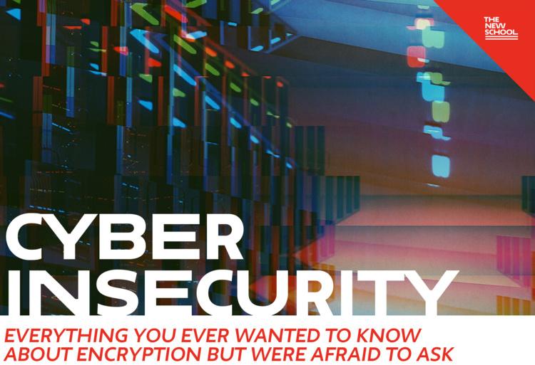 Cyber Insecurity: Everything You Ever Wanted to Know About Encryption But Were Afraid to Ask