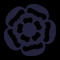 AA Rosette logo