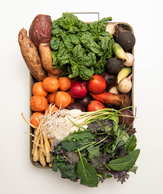 An overhead shot of a neatly-organized tray filled with a wide variety of garden vegetables.