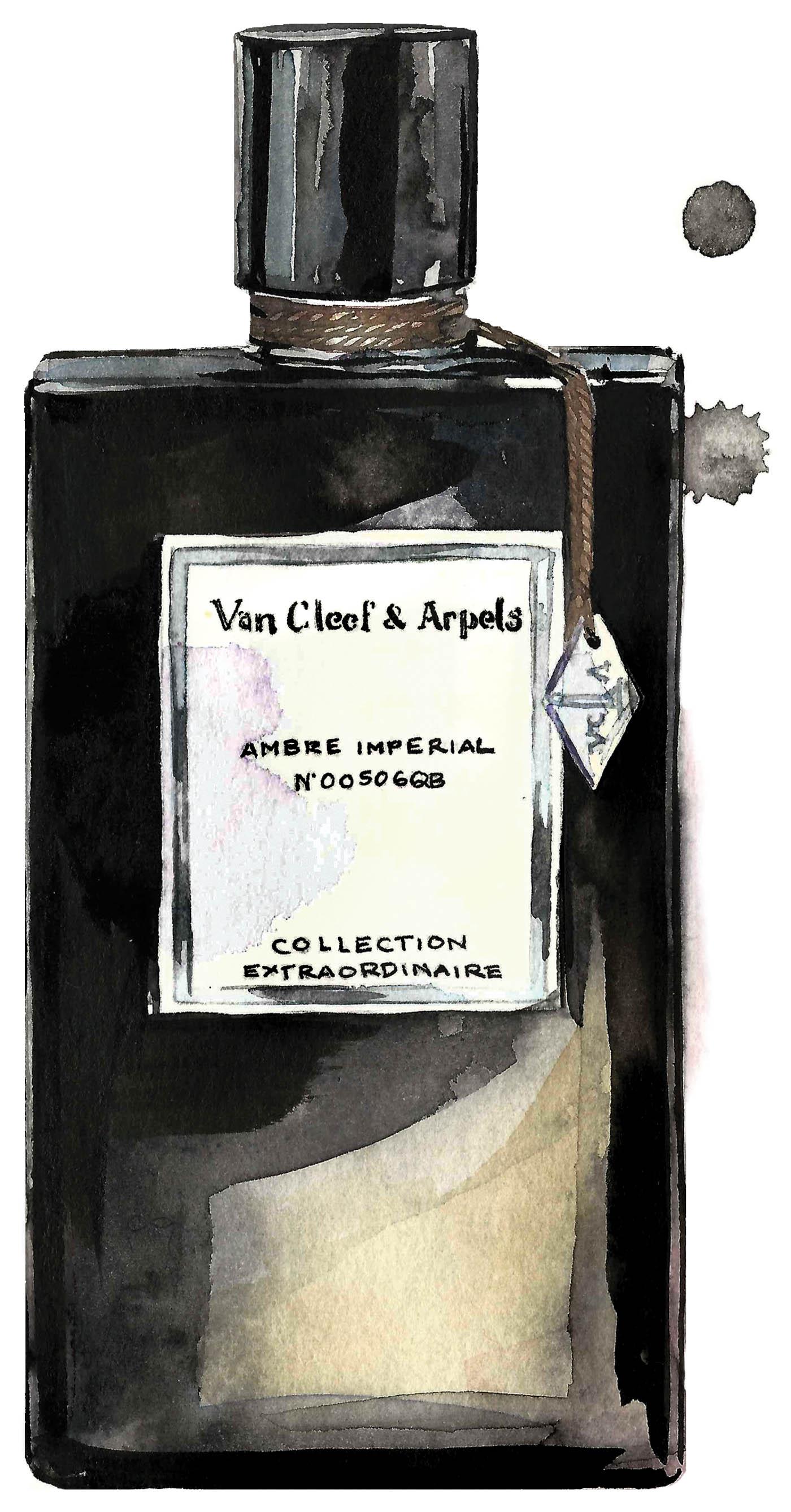 P VanCleef