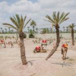 Honeymoom – Morocco