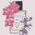 Fragrance our top picks – first selection
