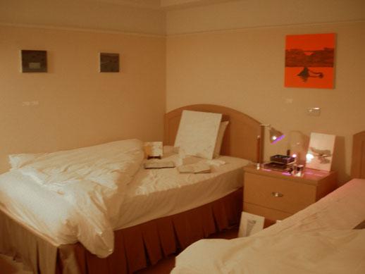 Hakutosha in Room 207