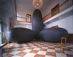 Masanori Sukenari, 'A King and I #1' (2001) nylon, ventilator