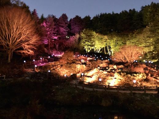 Kyota Takahashi, 'Japanese lantern parade landscape 2020'