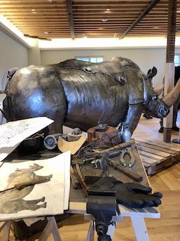 Nozomu Uchida, 'Form of living things'
