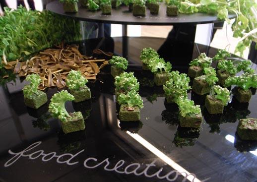 まるで苔の塊のようなチョコレート。Food Creationによるすばらしいケータリング。テーマは「池」。
