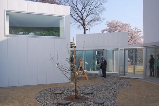 館内の中庭。オノ・ヨーコの《念願の木》などが設置されている。
