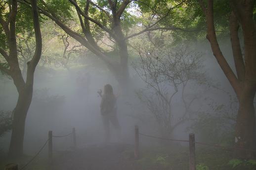 中谷芙美子《雨月物語-懸崖の滝 Foggalls #47670》