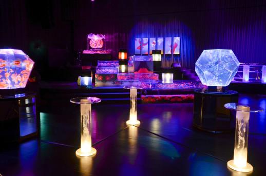 ダイナースクラブ アートアクアリム展(2012)