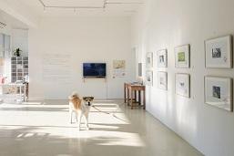 2015年6月に多目的ギャラリーとしてリニューアルオープンしたゼロダテアートセンター。あいにいける秋田犬が常駐