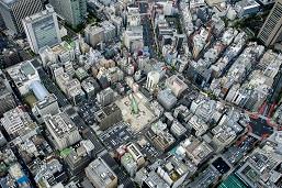 全長50mもある巨大な飛蝗が都会の空き地に出現し人々を驚かせた