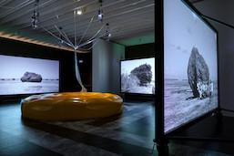 ヴェネチア・ビエンナーレ国際美術展の日本館展示が帰国中:人間・非人間の共存とエコロジー