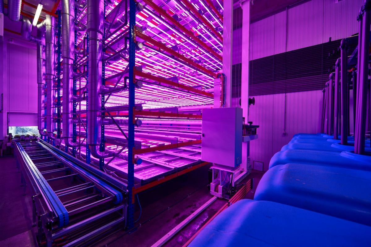 vertical agriculture