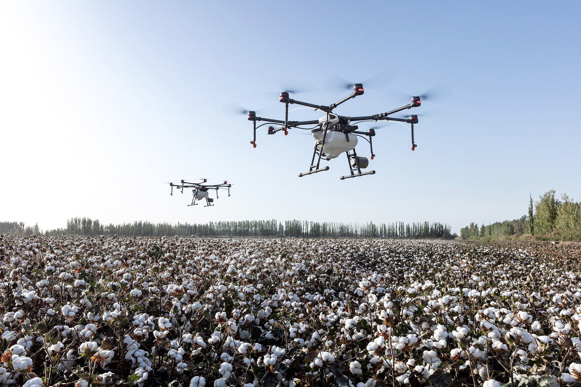 drones flying over cotton fields