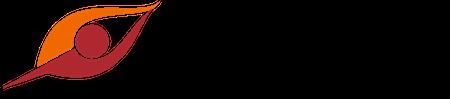 Logo_VisualSelling 450x99.png