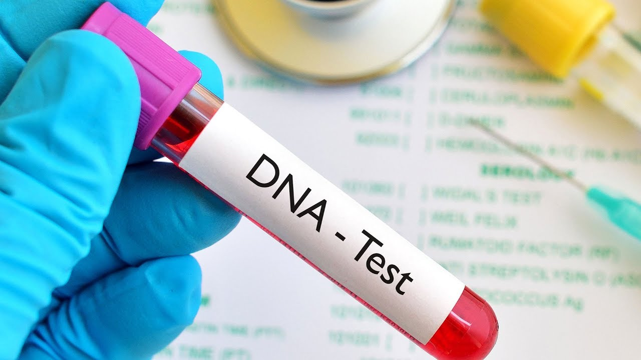 The Best DNA Testing Kits Available Now