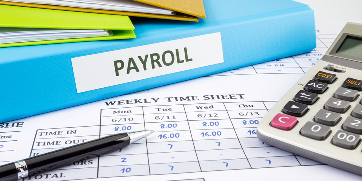 Top 5 Payroll Software Options for Businesses