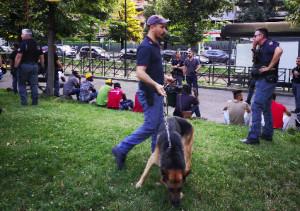 La polizia batte a tappeto il parco del Valentino: arrestati in cinque