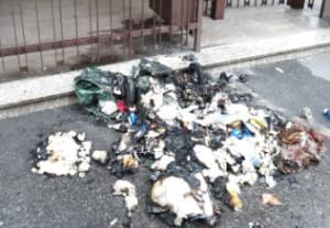 Torino: piromane colto sul fatto dalla Polizia di Stato