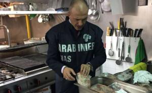 Ratti nelle cucine, denunciata trattoria a Cantoira