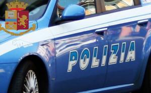 Torino: topi d'appartamento in zona Santa Rita