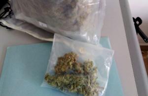 Torino: oltre 400 grammi di marijuana in casa