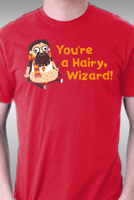 Hairy Wizard