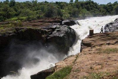 Falls of murchison