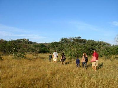 Walk in mburo np