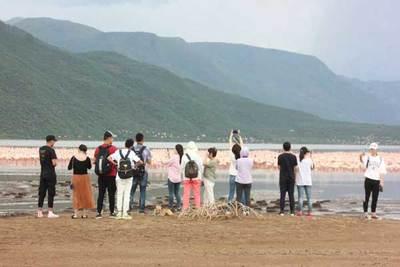 Lake bogoria resort guest watch flamingoes