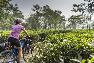 Brahmaputra cycling4