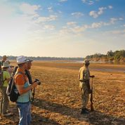 Sunway zambia south luangwa   day 9