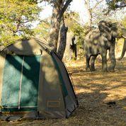 Sunway botswana  moremi   day 6