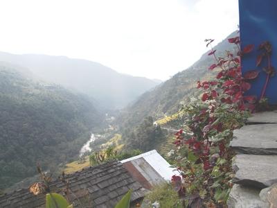View on the way to tadapani
