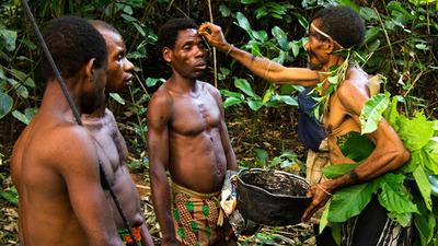 Pygmies healing
