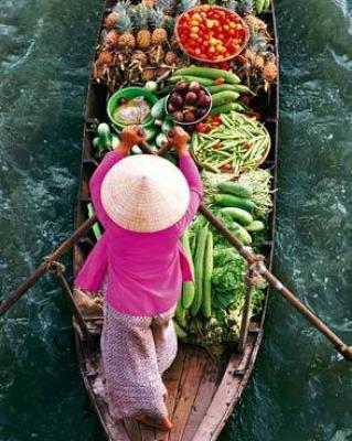 Floamarket mekong delta  vietnam