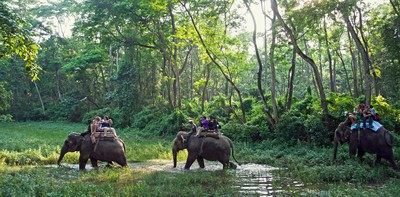 Chitwan.national.park.