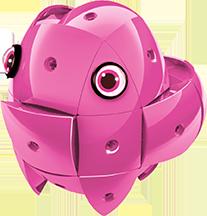 KOR ALTRI KOR Color Pink - GEOMAGWORLD - Marche Unisex 3-5 Anni, 5-7 Anni, 5-8 Anni, 8-12 Anni