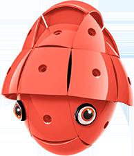 KOR ALTRI KOR Color Red - GEOMAGWORLD - Marche Unisex 3-5 Anni, 5-7 Anni, 5-8 Anni, 8-12 Anni