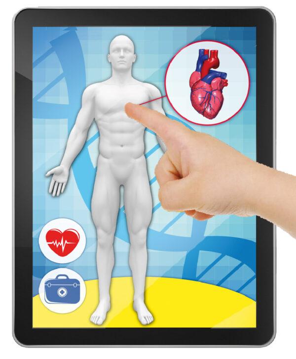 Piccolo Genio Anatomia del corpo umano - Piccolo Genio - Toys Center ALTRI Unisex 12+ Anni, 5-7 Anni, 5-8 Anni, 8-12 Anni PICCOLO GENIO